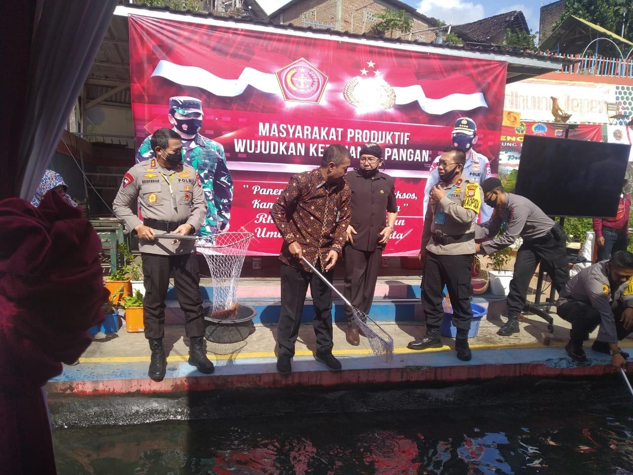 Panen Raya Ikan Kampung Tangguh Nusantara Rukun Kampung Ponggalan di Bendung Lepen Mrican Kelurahan Giwangan Kecamatan Umbulharjo