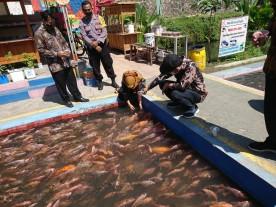 Kunjungan Kerja Bupati Banyumas di Bendung Lepen Mrican Kampung Ponggalan Kelurahan Giwangan